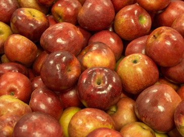 Ritter Farms apples